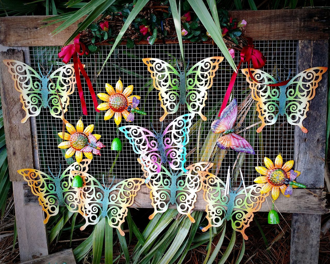 Check This Out Beautiful butterflies at Renaissance Fair Artwork Melbourne FL