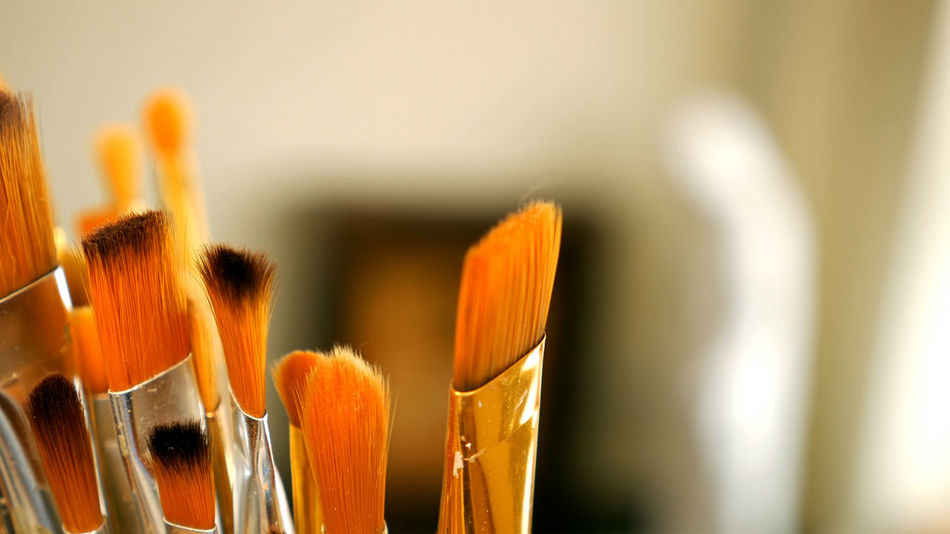 Close-up Day Flower Flower Head Freshness Indoors  Nature No People Paintbrush