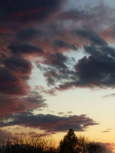 Skyandclouds  Backyard Sky And Clouds EyeEm Best Shots - Sunsets + Sunrise Colorful Sky Sky Colors Skyviewers Tree And Sky Eye Em Best Shots Eyeemclouds