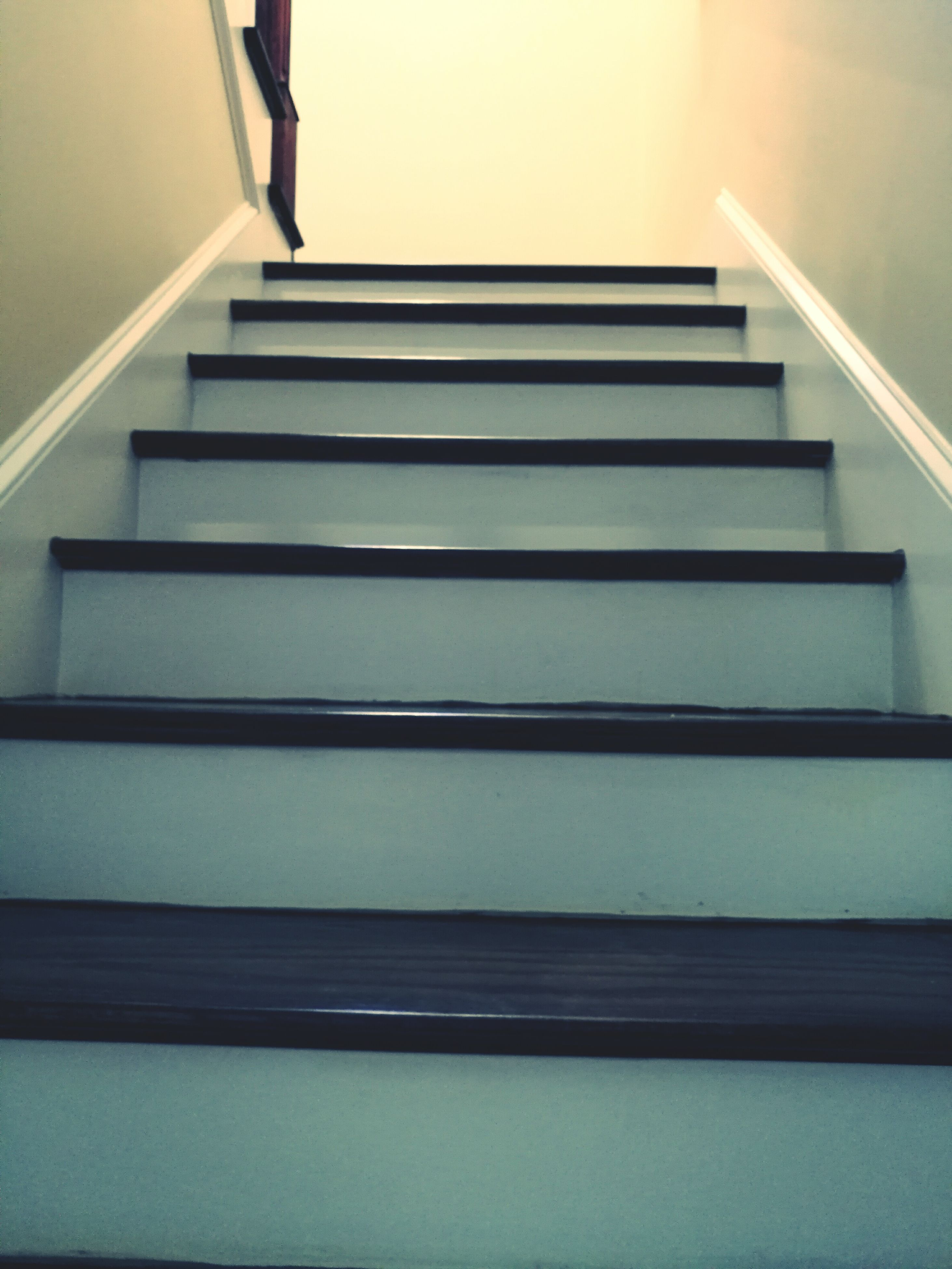 steps, staircase, stairs, building, no people, day, diminishing perspective, the way forward, empty, modern, close-up, repetition