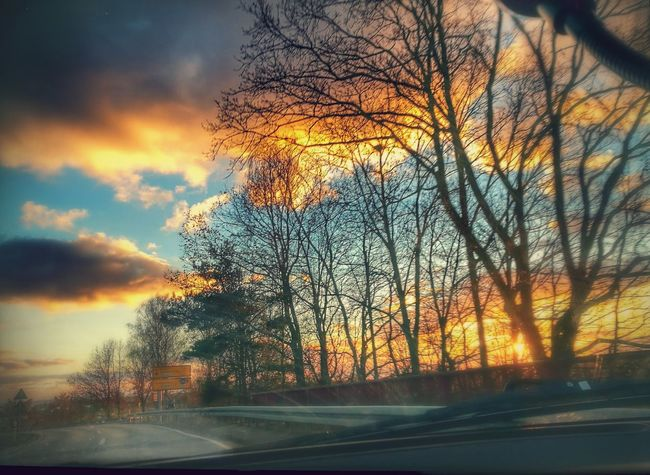 Shot out of the car. Beautiful Sunset♥♥Good Evening EyeEm Sunset Tree Orange Color Sky Nature No People Road Outdoors Beauty In Nature Scenics Day Clouds Multi Colored Colour Your Horizn Mobility In Mega Cities