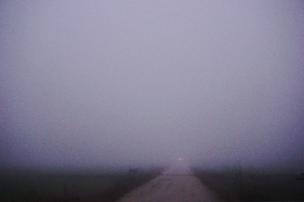 Atmosphere Contry Road Flat Land Fog Fog_collection Foggy Day Mirrorless Nature Nature_collection No Lights No People Nowhere Outdoor Photography Power In Nature Road To Nowhere Showcase: December Winterscapes Wintertime