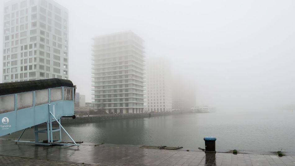 Foggy Morning Tranquil Scene