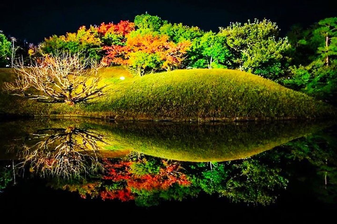 Kyoto Autumn Green Color Kyoto Japan Beautiful Tree Water Beauty In Nature Nature Happy :) Outdoors 京都 左京区 日本 美しい 水鏡 Reflected In The Water 紅葉 😚 Temple 寺 拝観 ワビサビ Autumn🍁🍁🍁 Mepletree