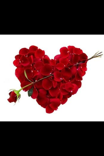 Happy Valentines!...:))