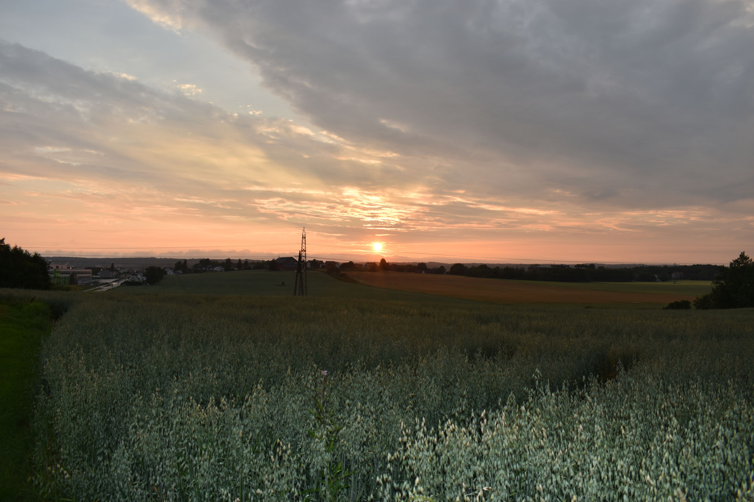 sunset, field, tranquil scene, landscape, sky, tranquility, scenics, beauty in nature, grass, rural scene, nature, cloud - sky, sun, growth, agriculture, idyllic, cloud, plant, sunlight, horizon over land, grassy, orange color, cloudy, outdoors, no people, non-urban scene, sunbeam, remote, non urban scene, green color
