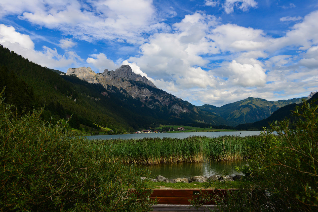 Alpen B Bergsee Haldensee Himmer Hintergrund S Schilf Schwimmen Tannheimer Tal