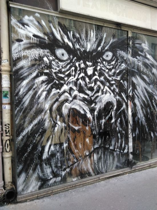 Original Photography No Filter, No Edit, Just Photography Graffiti Art Ape Looking Angry Threatening Face Feel The Journey