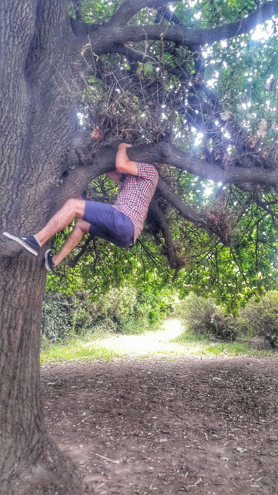 Climbing a tree part 2 Peoplephotography People Photography People Street Photo Streetphotography Buenos Aires, Argentina  Street Photography Climbing A Tree Climbing Climbing Trees EyeEm Buenos Aires