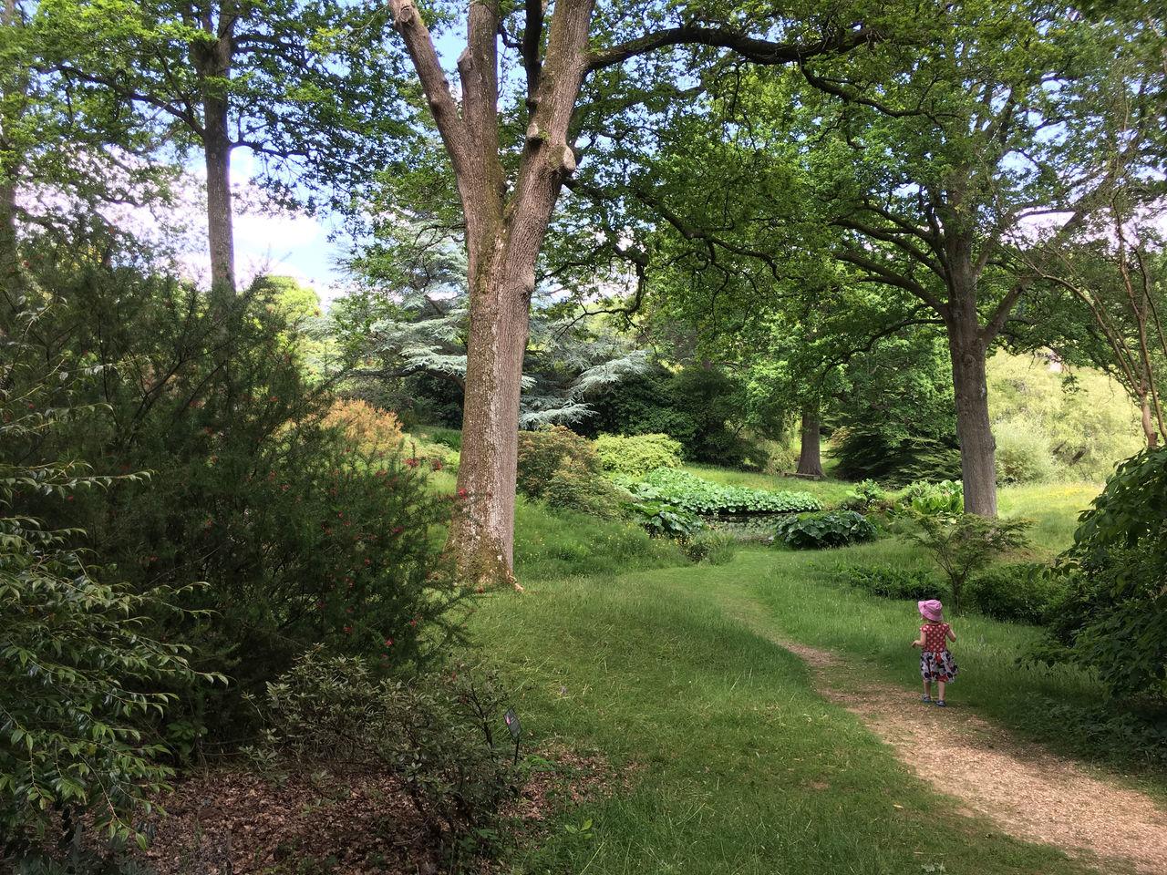 Little Girl Outdoors Park Path Tree
