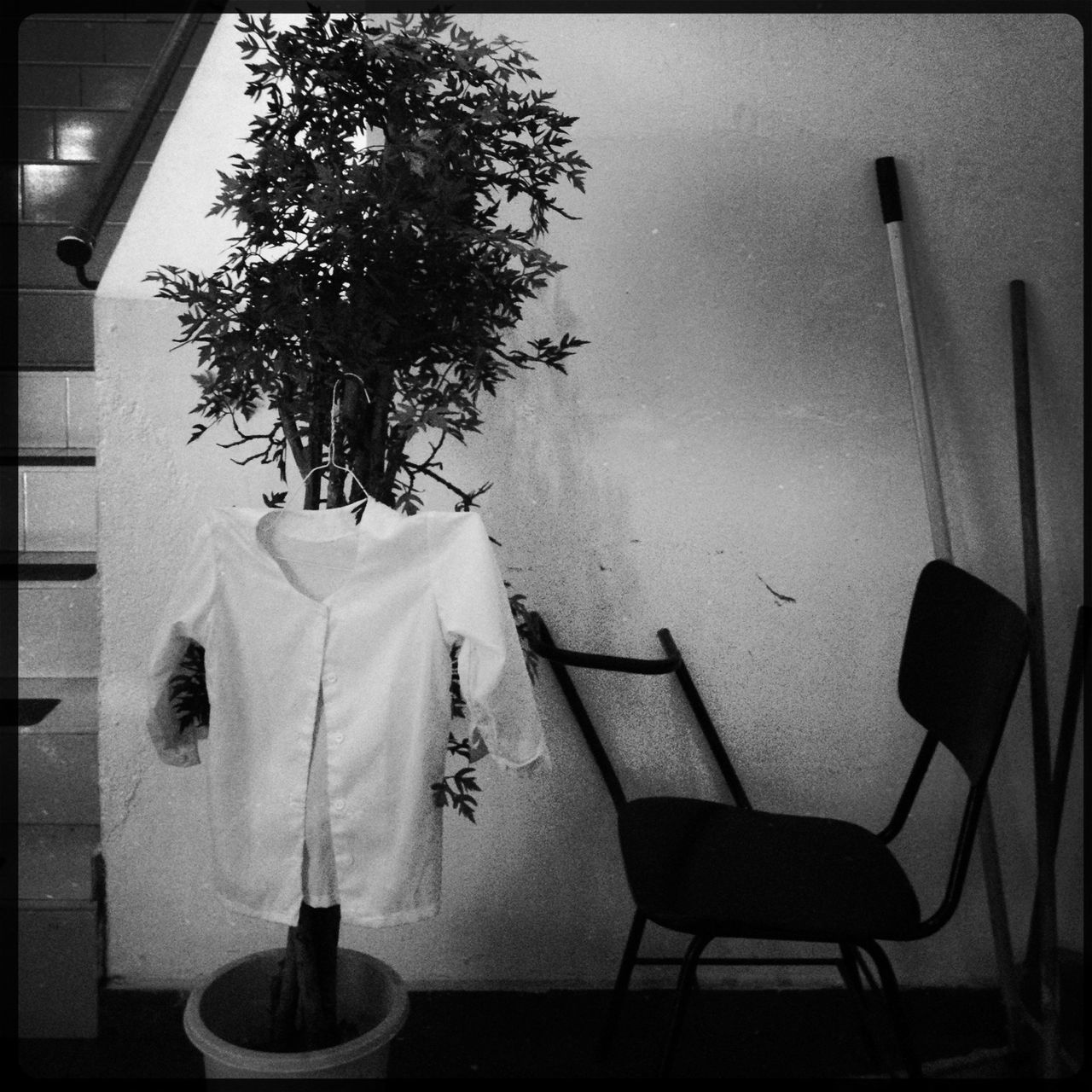 table, indoors, no people, chair, home interior, tree, architecture, day
