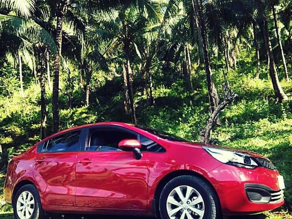 MeinAutomoment .. best car experience is how youre able to park into the woods.. ;) Carmoments Thru The Forest... from the province of Libagon Southern Leyte