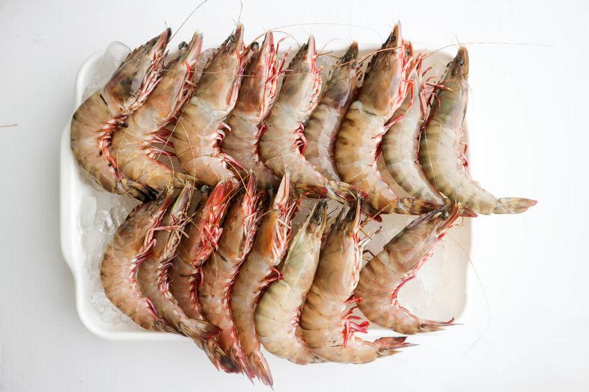 Animal Food Big Size Food Food And Drink Freshness Healthy Eating Meat Raw Food Seafood Shrimp