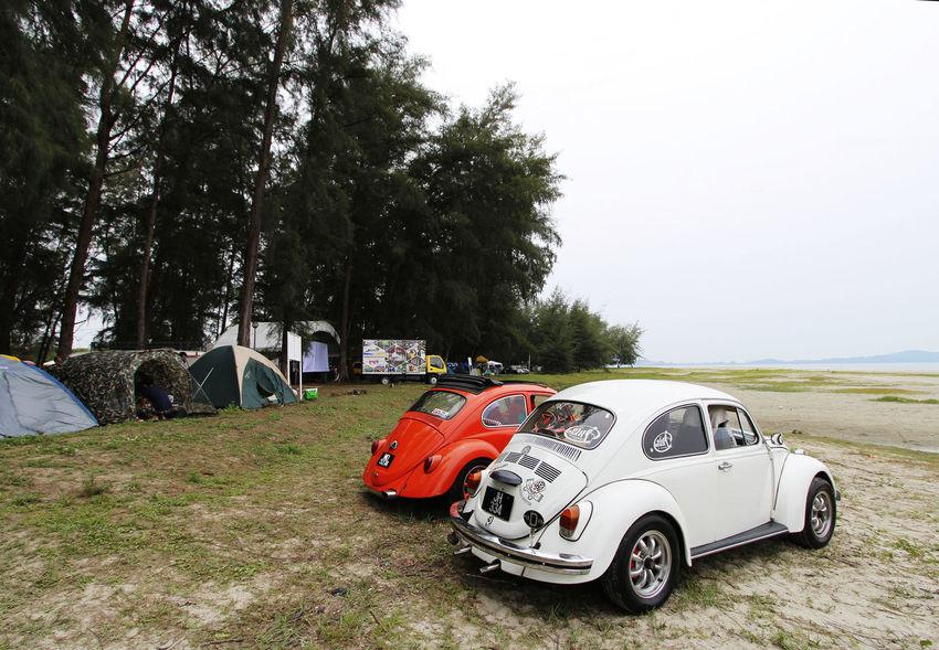 Automobile Car Car Show Competition Display Festival Volkswagen Volkswagen Beetle