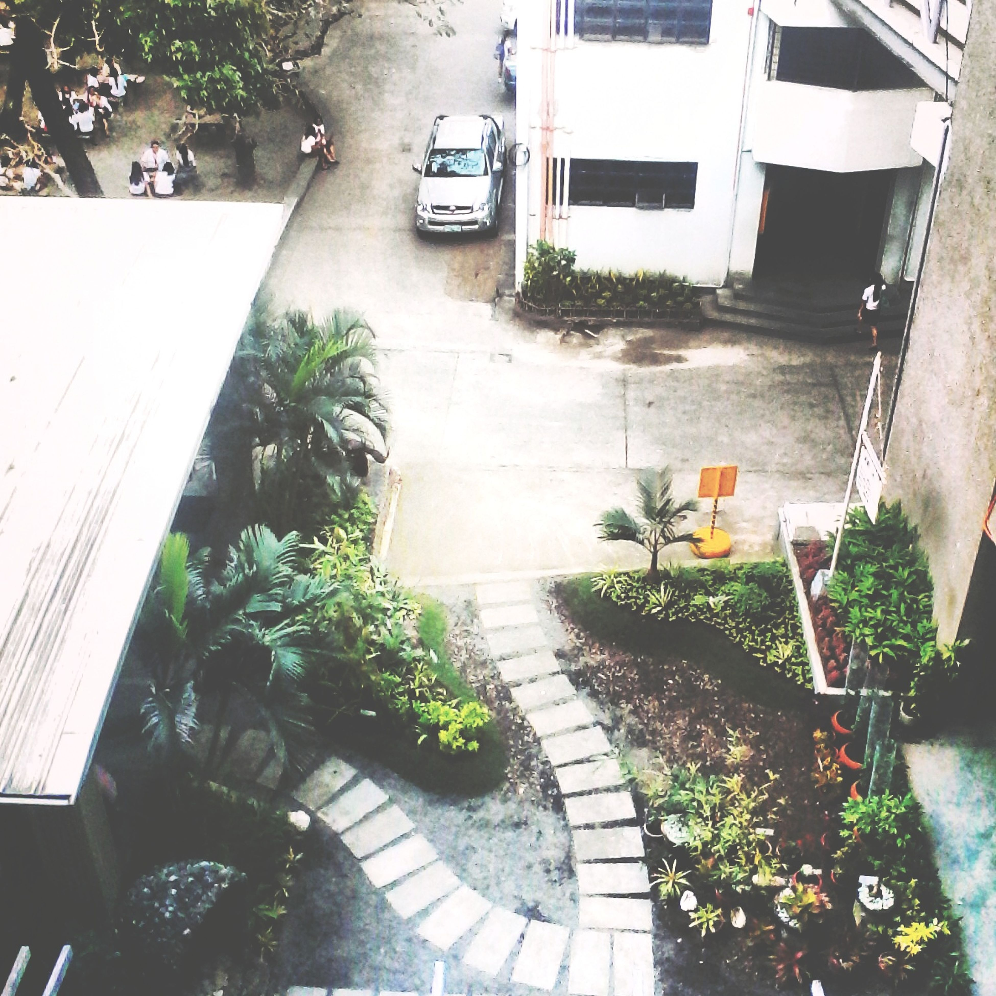 architecture, built structure, plant, building exterior, high angle view, potted plant, the way forward, steps, empty, growth, chair, sunlight, railing, house, narrow, absence, staircase, steps and staircases, footpath, day