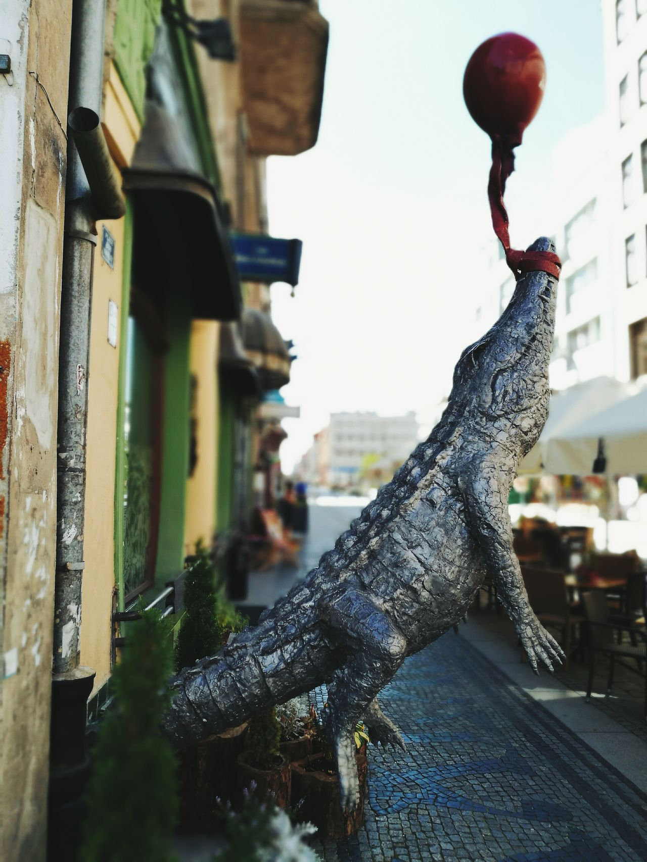 Flying High City Life Outdoors Still Life Taking Photos HuaweiP9 Vscocam VSCO Mobilephotography Eye4photography  Street Streetphotography City Travel Travel Destinations Street Photography Urban Exploration