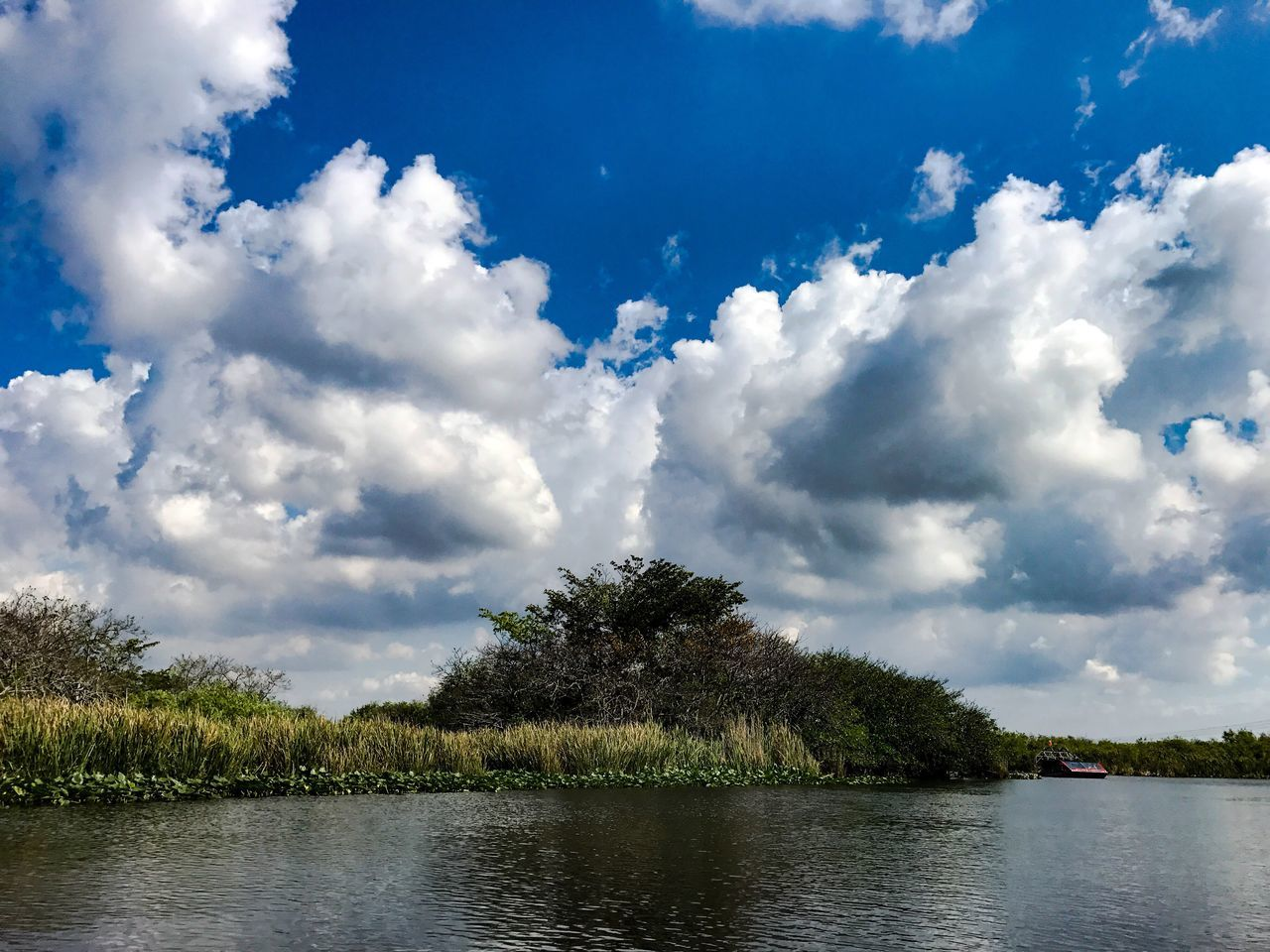 Water Sky Cloud - Sky Nature Tree Scenics Tranquility Day Outdoors Beauty In Nature No People Landscape Everglades  Evergladesnationalpark Florida Florida Nature