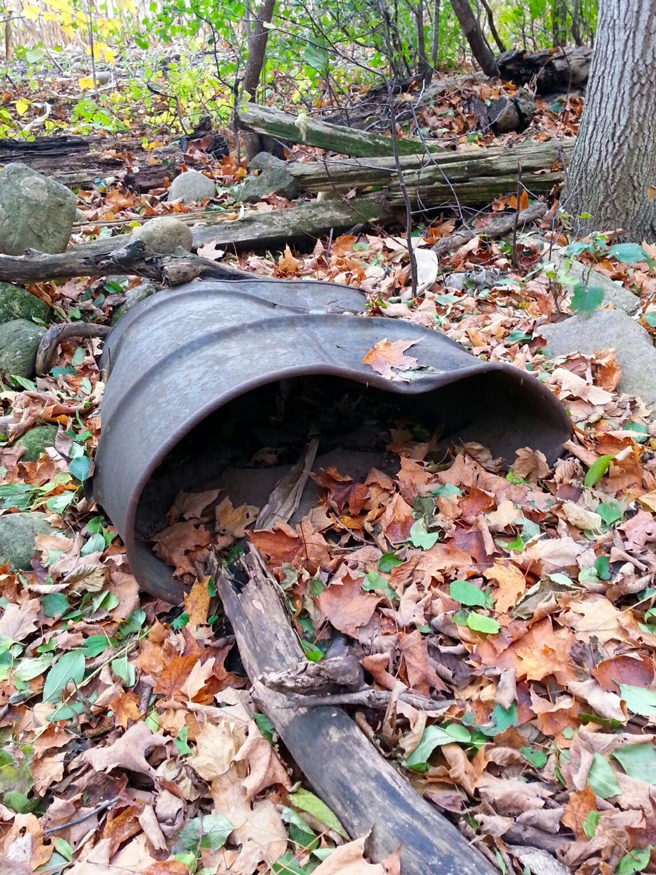Man And Nature Justaposition RustedMetal Barrel Autumn Leaves