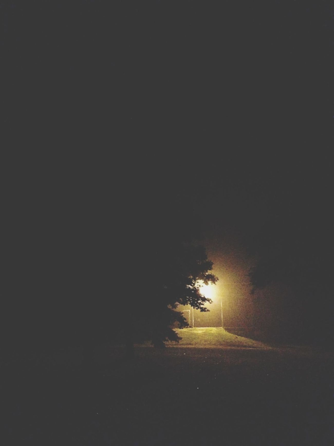 the light tonight EyeEm Best Shots AMPt_POTD