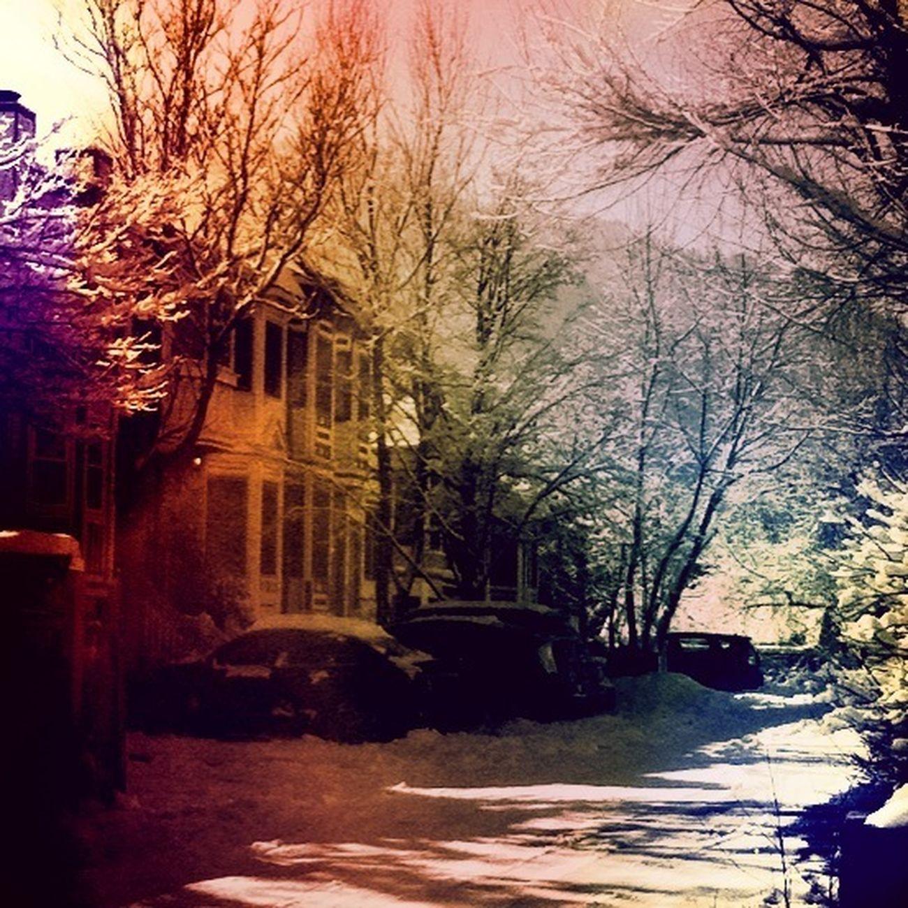 Future Neighborhood