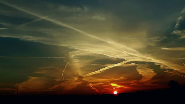 Sunrise Brand New Day Crack Of Dawn Color Palette Colour Of Life Contrails Chemtrails