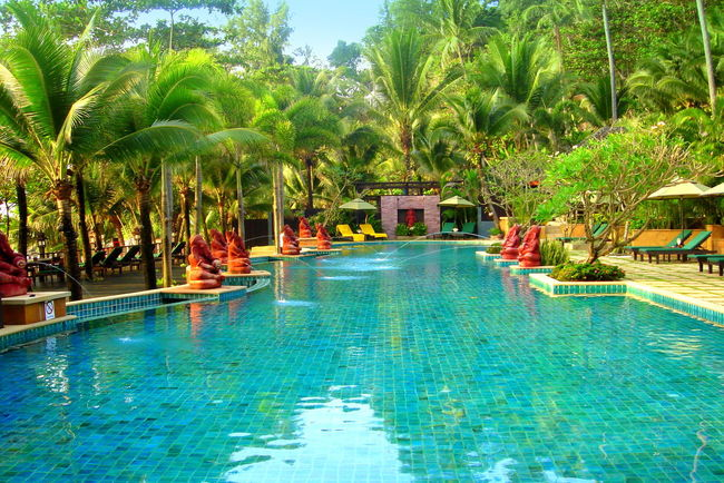 Andaman Sea Beach Resort Crystal Blue Water Hotel Idyllic No People Outdoors Palm Tree Phuket Reflection Swimming Pool Swimming Pool Reflection Swimming Time Thailand Tranquil Scene Tranquility Travel Destinations Travel Photography Traveling Travelling To Phuket Treescape Turquoise Colored Turquoise Water