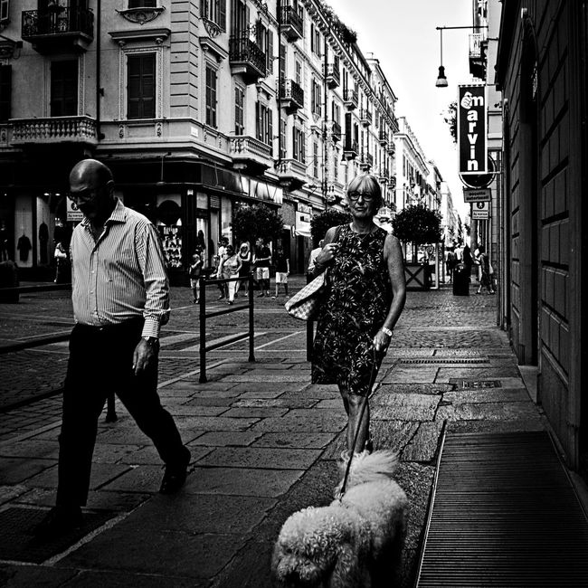 Dogs like sheeps. Adult Black And White Black And White Photography Bnw City City Life Dog Lifestyles Olympus Om-d E-m10 Outdoors People Person Puppy Street Street Life Street Photography Torino Italy Turin Turin Italy Walking People Monochrome Photography