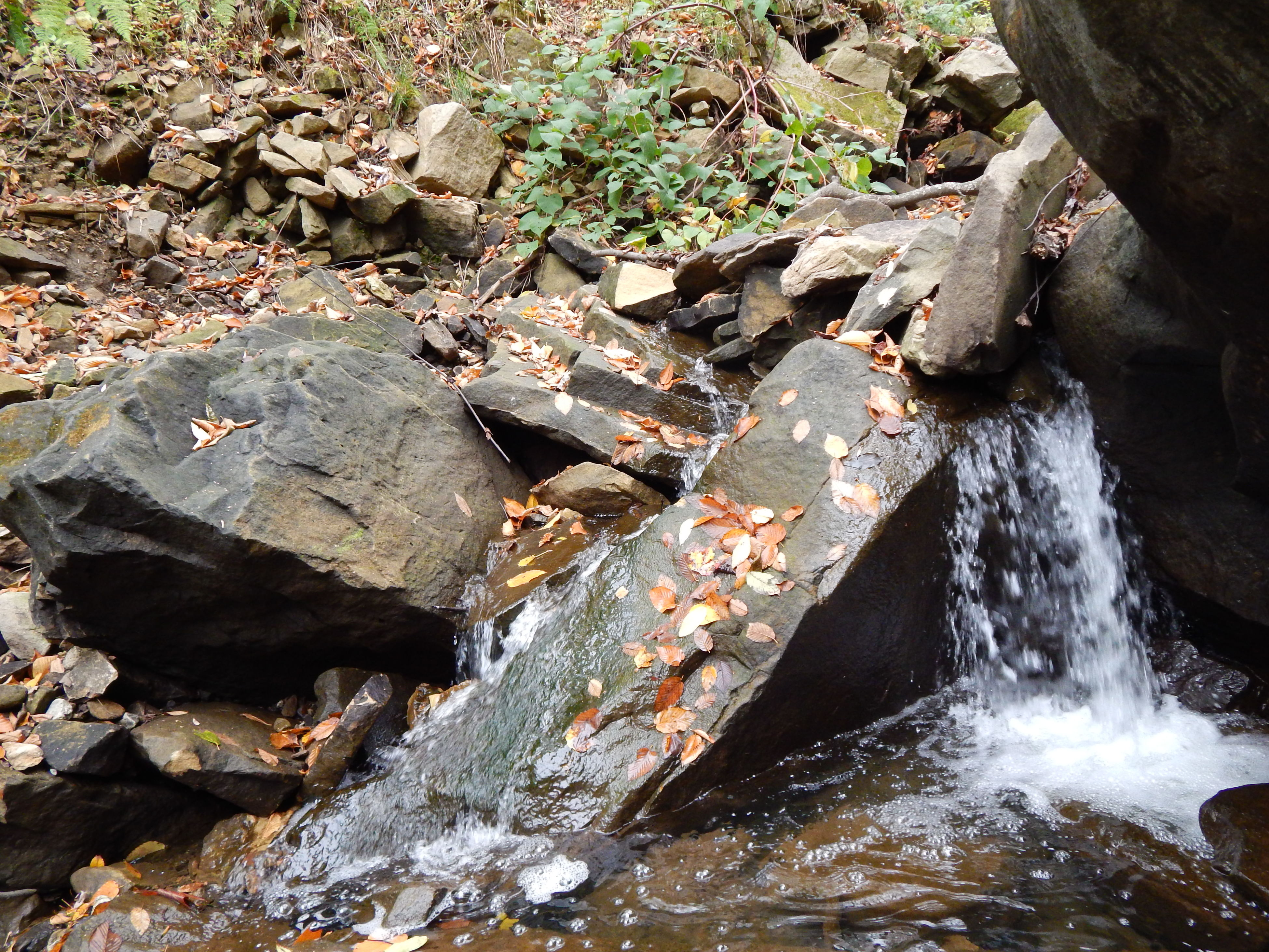 stream Day Outdoors No People Water Nature Beauty In Nature EyeEmNewHere