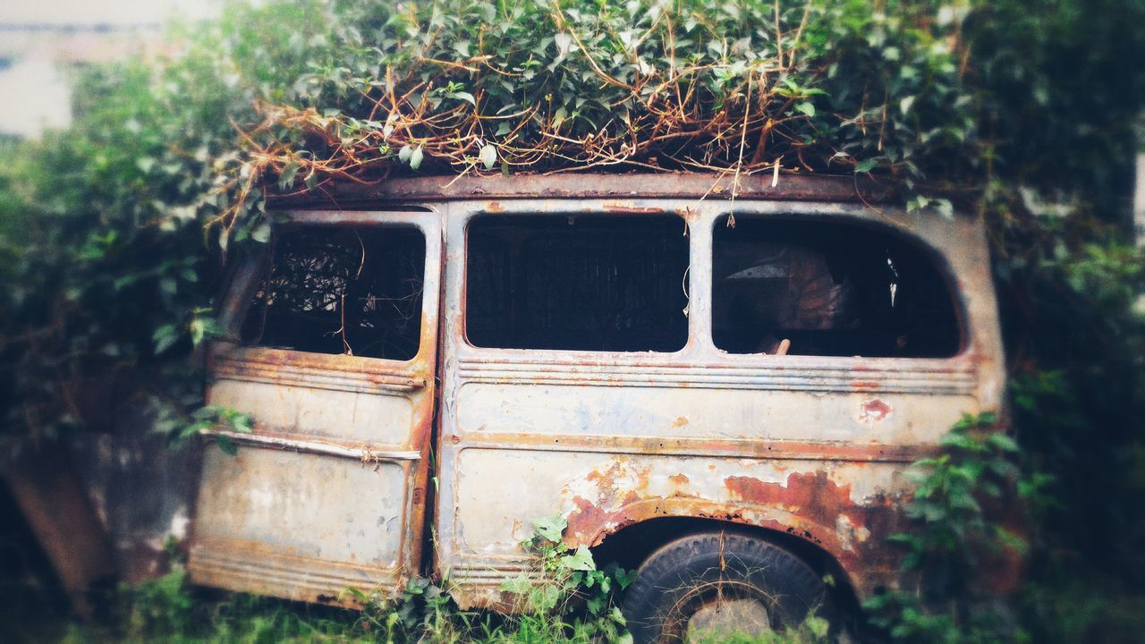 Oldcars Abandoned Rustedmetal Rusted Car In Forest No People Mode Of Transport Plant Outdoors Growth Nature Day Land Vehicle Tree Transportation