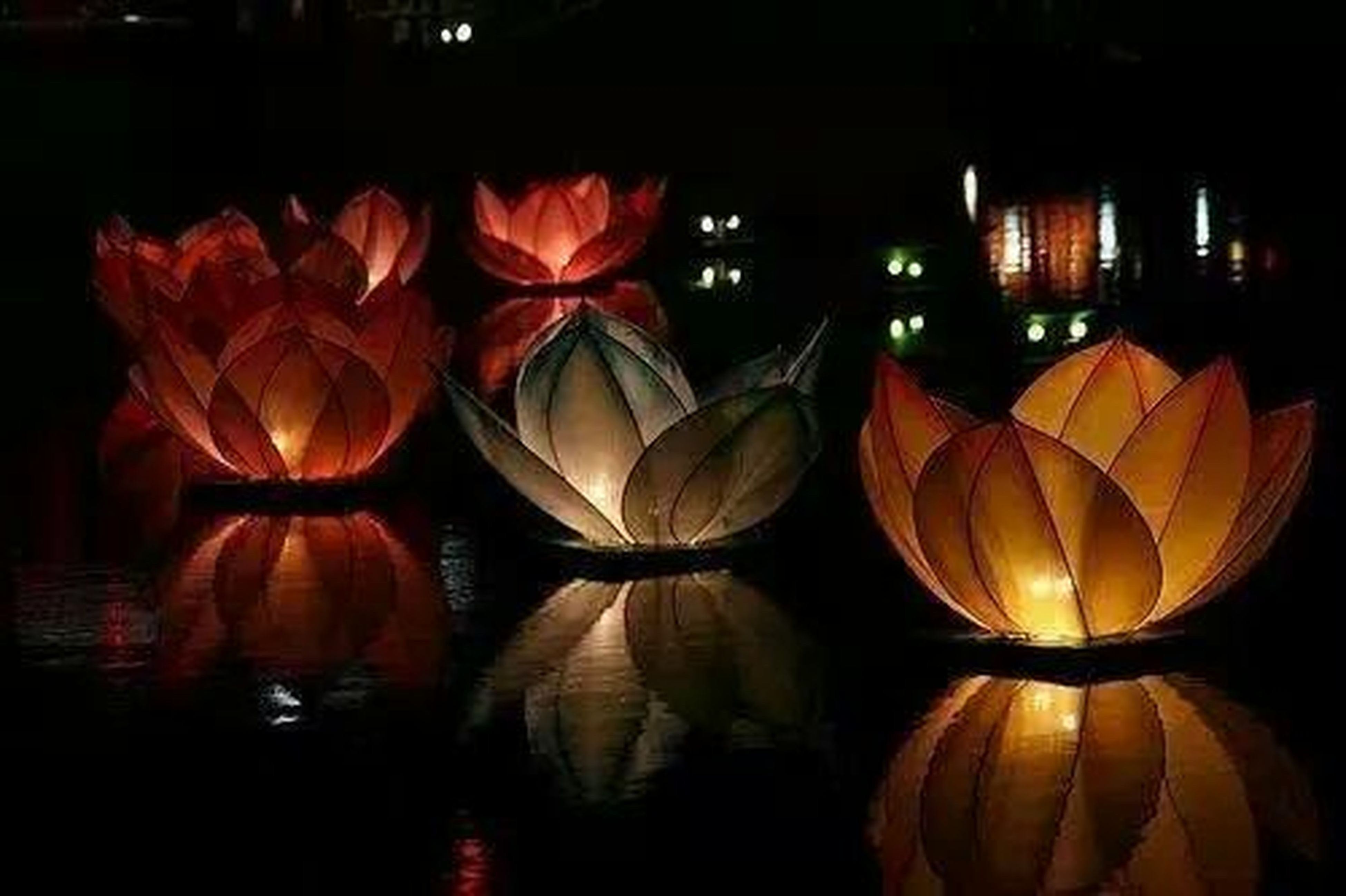 night, illuminated, decoration, red, orange color, hanging, outdoors, multi colored, no people, lantern, building exterior, large group of objects, abundance, celebration, variation, in a row, reflection, lighting equipment, dark, nature