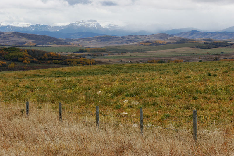 West to the Rockies Alberta Autumn Beauty In Nature Canada Cloud Countryside Expanse Fall Fence Field Grass Idyllic Mountain Range Mountains Nature Range Rangeland Remote Rockies Rural Scene Tranquil Scene Turner Valley Vista West Western Canada