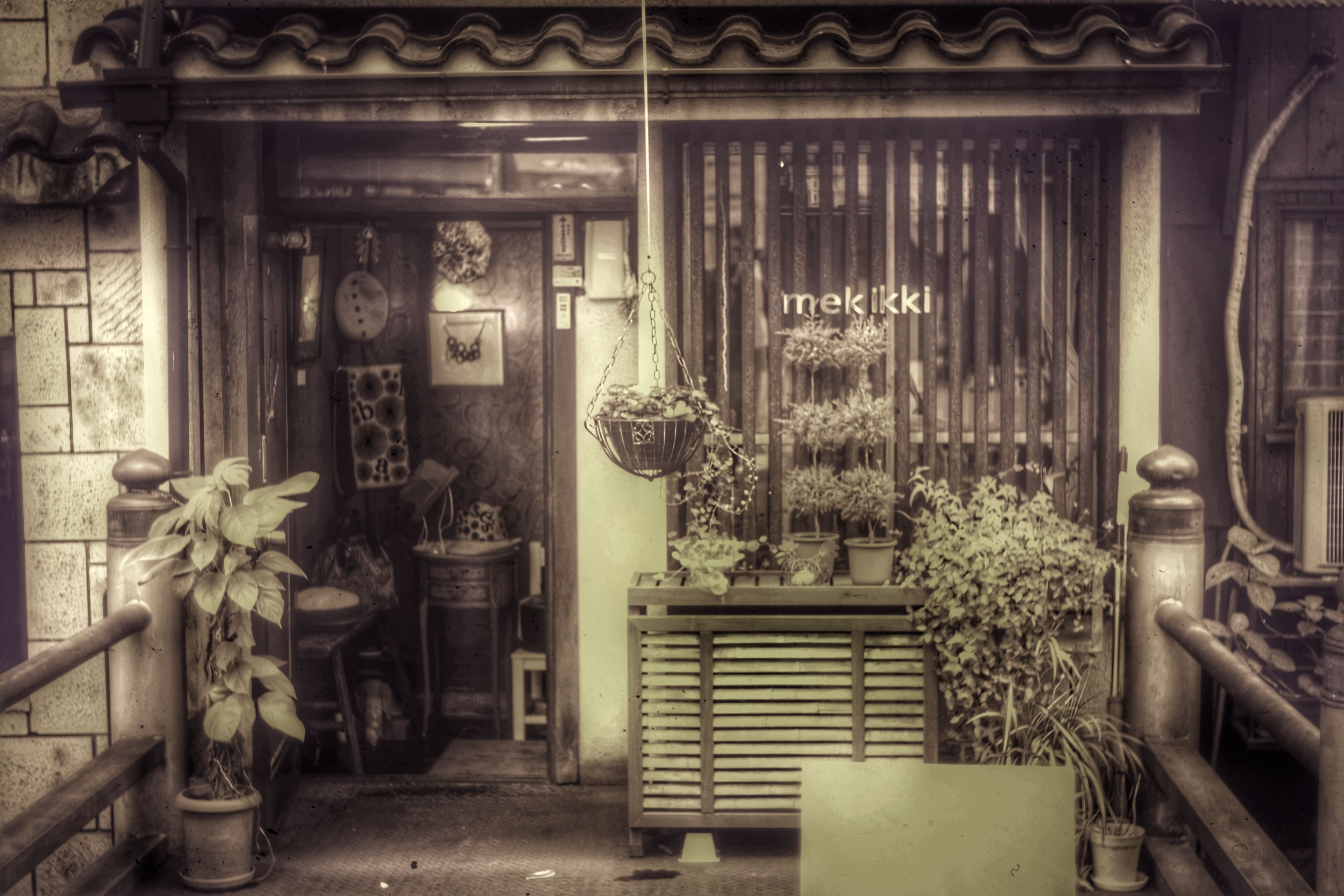 architecture, built structure, building exterior, house, door, old, window, abandoned, entrance, wood - material, potted plant, closed, no people, day, plant, indoors, obsolete, building, residential structure