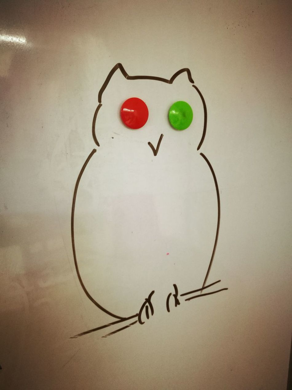 Owl Eyes Owl Whiteboard Magnet Magnetic Eyes Drawing Sketch Classroom