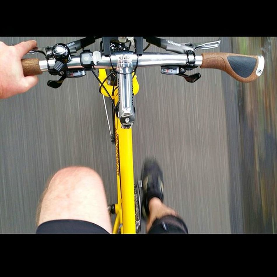 Riding home on the Yellow Flash! Biketowork Velotraum Cross7005ex Cycling Fahrrad Hamburg Bikelove Biketouring Commuting Radfahren 😚 Nofilter Picoftheday Fitfornix Fitness Sport Reiserad