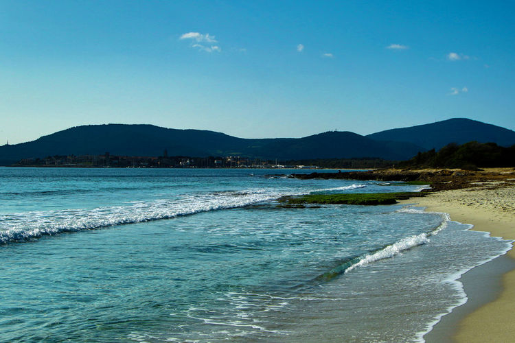 Alghero Beach Beauty In Nature Day Nature No People Outdoors Sardinia Sea Sea And Sky Seascape Sky Tree Water