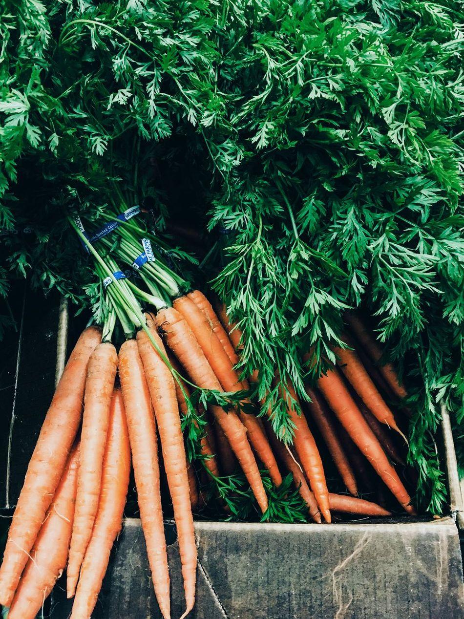 Beautiful stock photos of health,  Bunch,  Carrot,  Close-Up,  Day