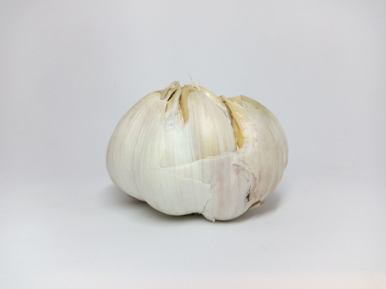 Freshness White Background Food And Drink Healthy Eating Food Studio Shot Single Object Vegetable Close-up Garlic Clove No People Whole Garlic Bulb
