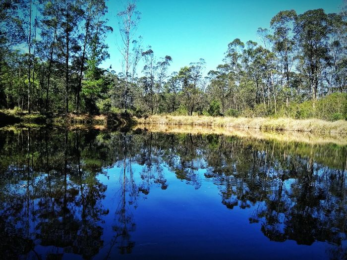 Reflection Water Blue Nature No People Day Outdoors Sky Nature Reflexo  Agua Beauty In Nature Tree