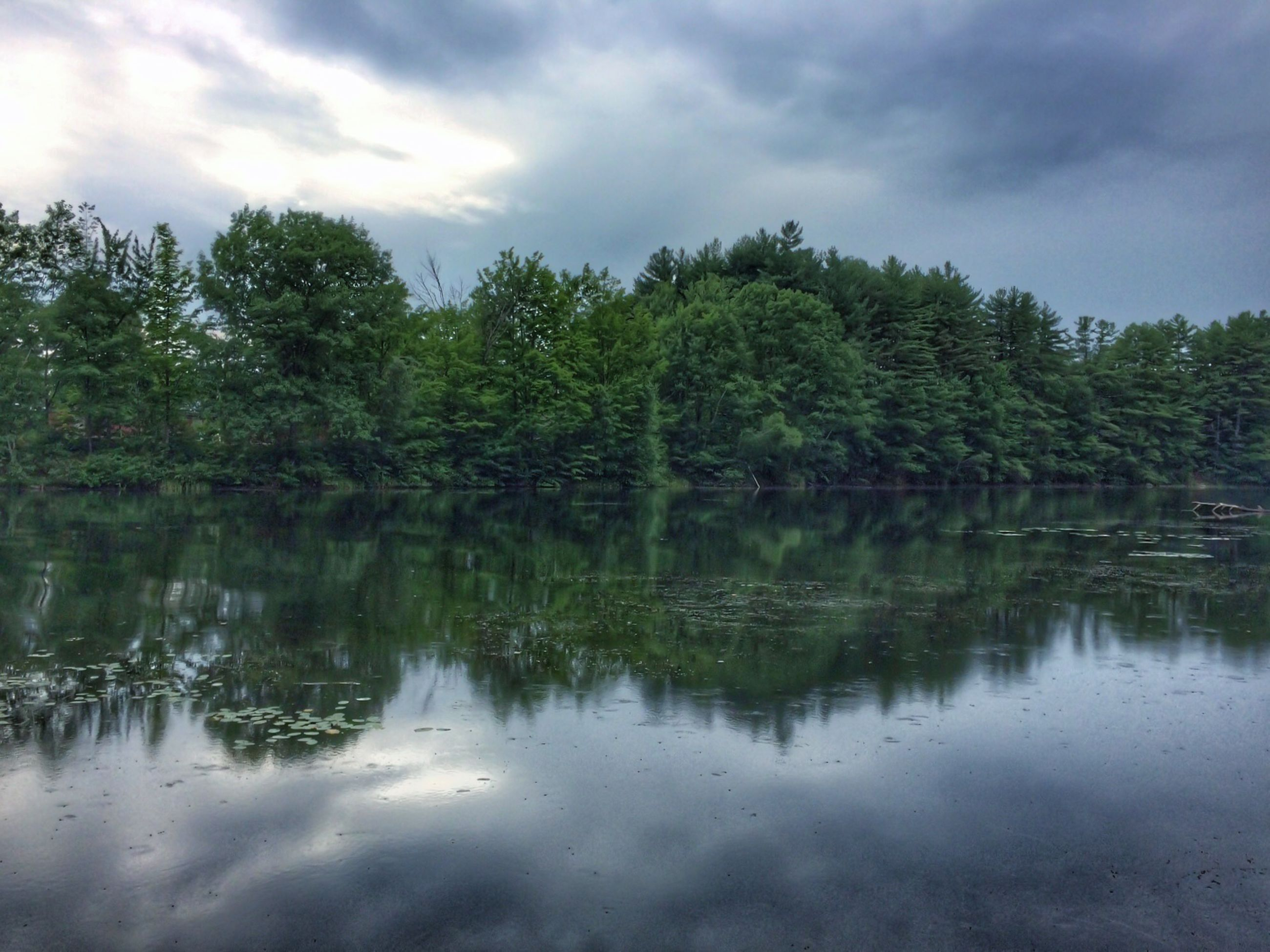 reflection, water, tree, lake, sky, tranquility, tranquil scene, waterfront, cloud - sky, scenics, beauty in nature, nature, cloudy, standing water, cloud, idyllic, calm, day, outdoors, growth