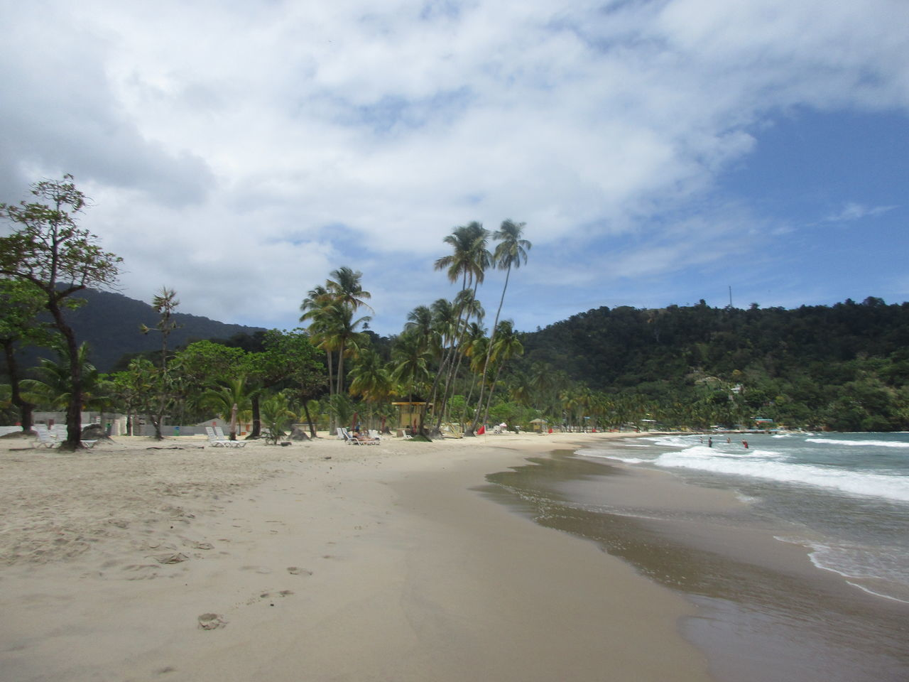 sand, beach, tree, sky, nature, tranquility, scenics, tranquil scene, beauty in nature, cloud - sky, sea, growth, palm tree, no people, outdoors, day