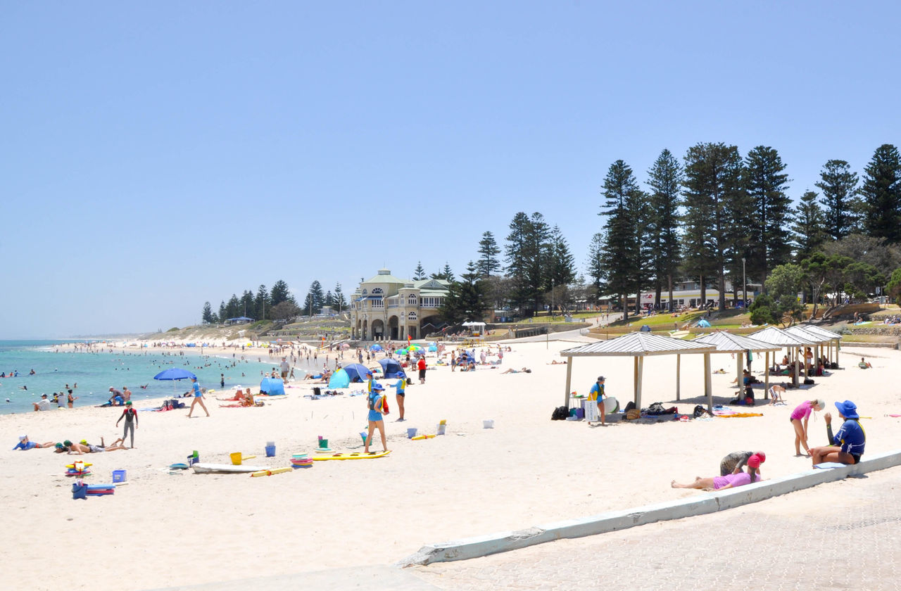 Crowds sunbathing and swimming in the Indian Ocean at Cottesloe Beach in Western Australia Australia Beach Cottesloe Crowd Day Families Holiday Indian Ocean Large Group Of People Leisure Activity Nature Norfolk Pines People Relax Sand Sea Shelter Sky Summer Sunbathing Swimming Travel Destinations Vacations Water Western Australia