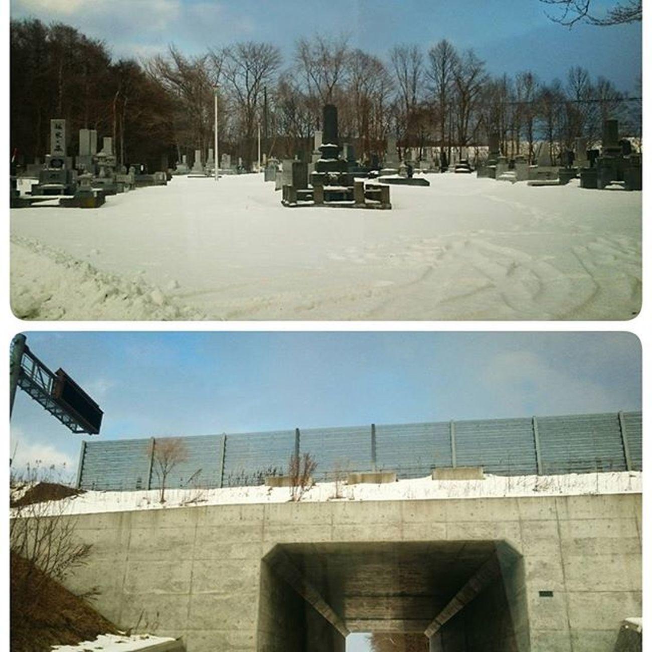 なおphoto 近道 お兄ちゃんをバイトに 送った帰り道 トンネルを抜けると そこは墓地だった Σ(|||▽||| )ガーン笑