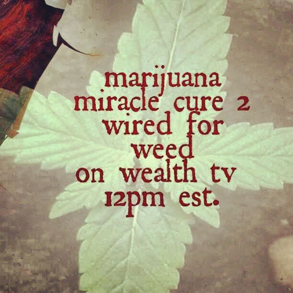 420 420likes Ogkush Kushgang thc mmj marijuana weedstagram420 wafyo weed cloud9 cannabis cali cloudnine