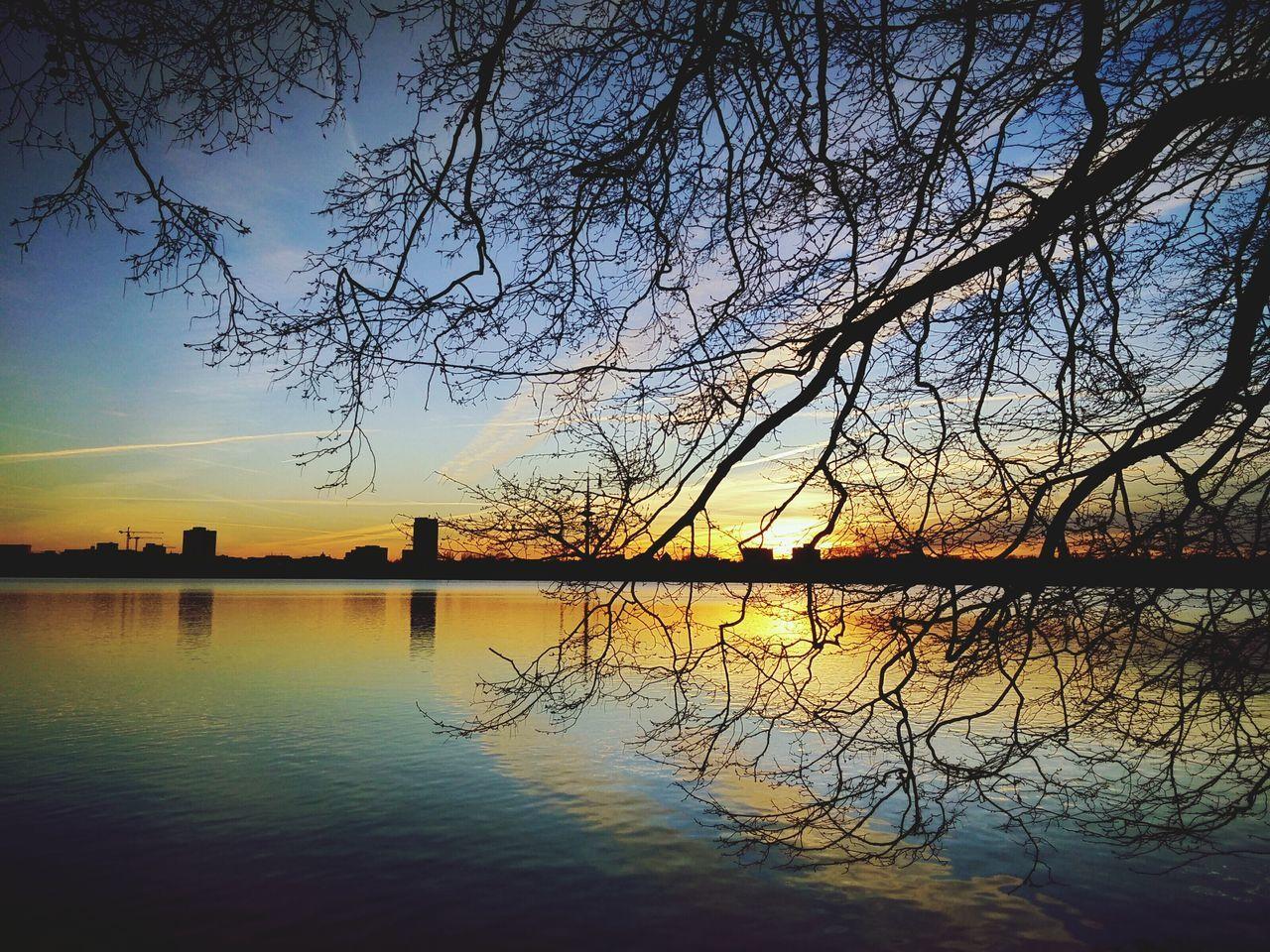 Silhouette Tree Over Lake Against Sky At Dusk