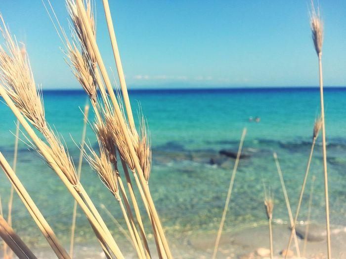 Greece Traveling Beach ♡♡♡♡