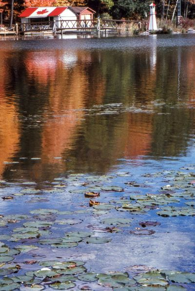 Cottage Life Fall Colors Nature No People Outdoors Reflection_collection Reflections Water Water Reflections Water_collection Waterfront Cottage Fall Beauty Fall Leaves Fall Collection Lighthouse Dock Dockside Docks Boathouses Landscapes Reflection Waterways Cloud - Sky Waterway