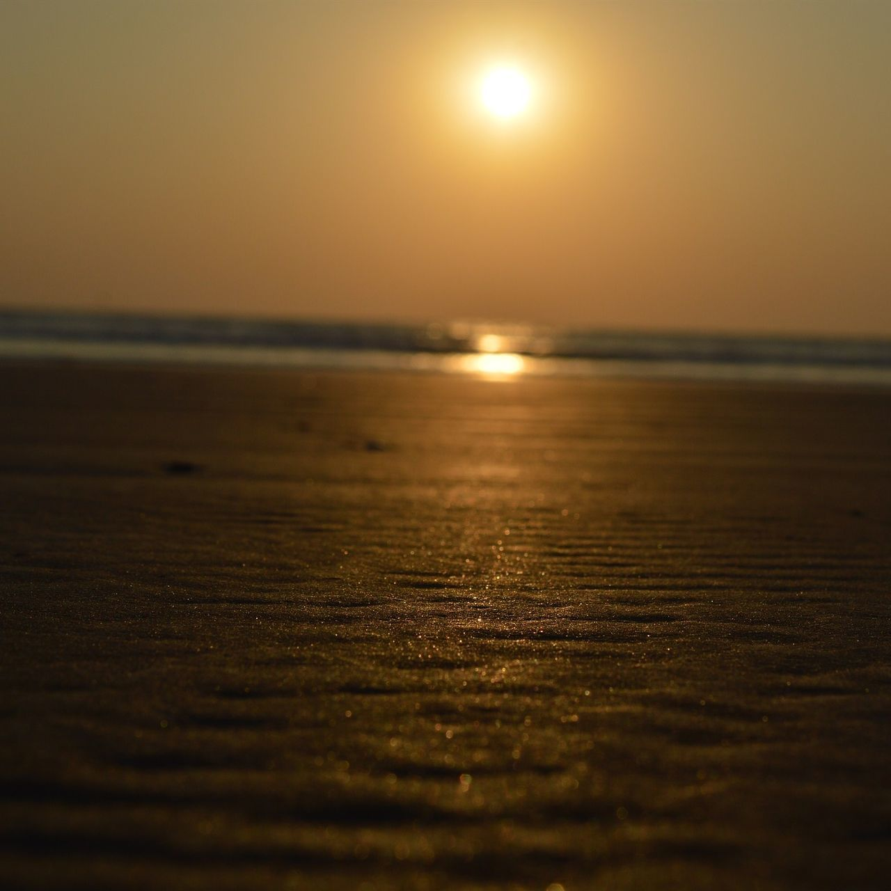 Surface Level On Sand At Beach During Sunset