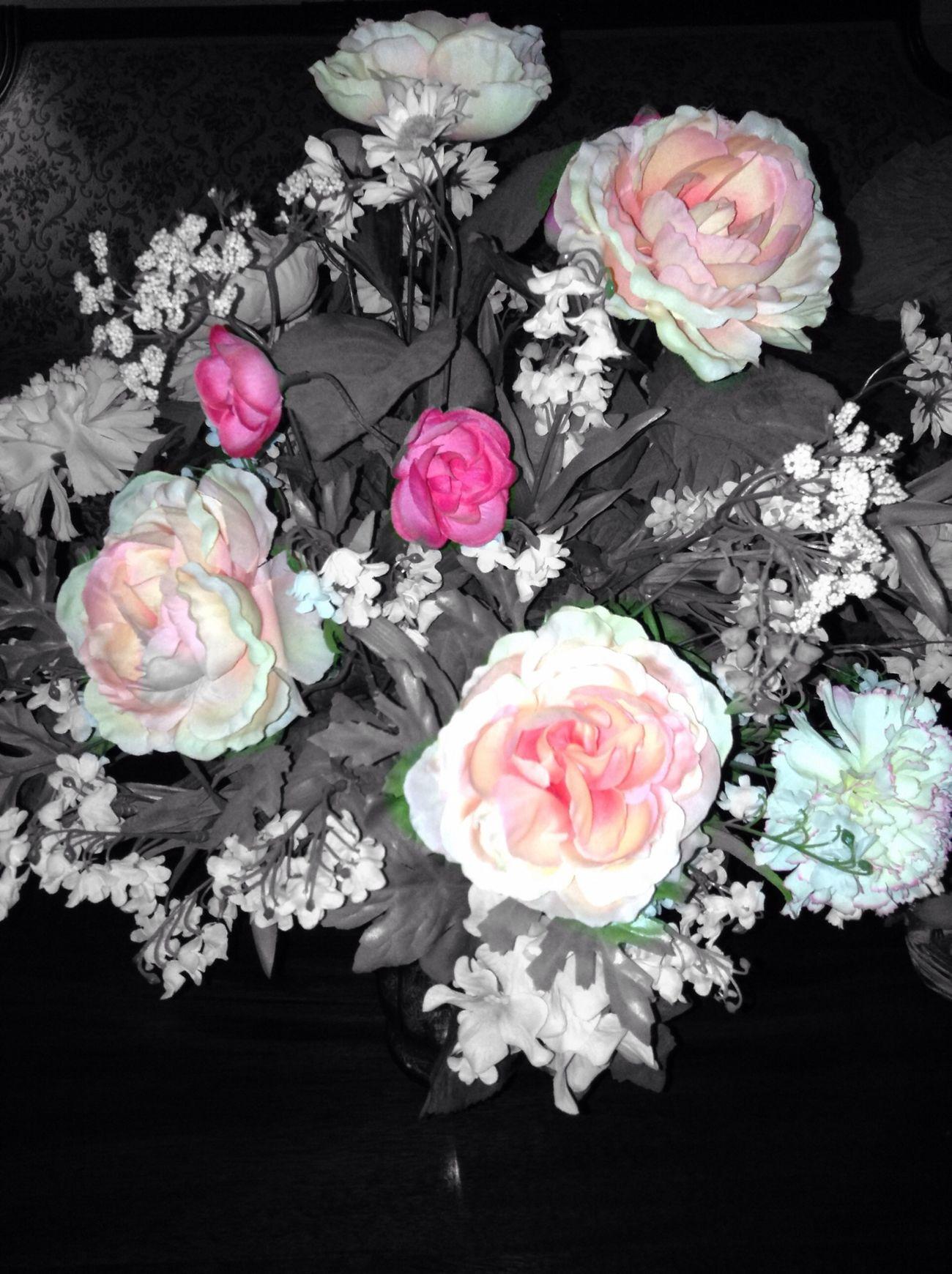 Cute♡ Flowers Tumblr ♡  Heart. Say hello