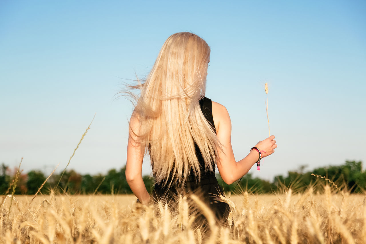 Alternative Energy Back View Blond Blond Hair Blonde EyeEmNewHere Field From Behind Girl Growth Lifestyles Live For The Story Long Hair Nature One Person Real People Rear View Rural Scene Spike Standing Summer Sunlight Wheat Wheat Field Woman