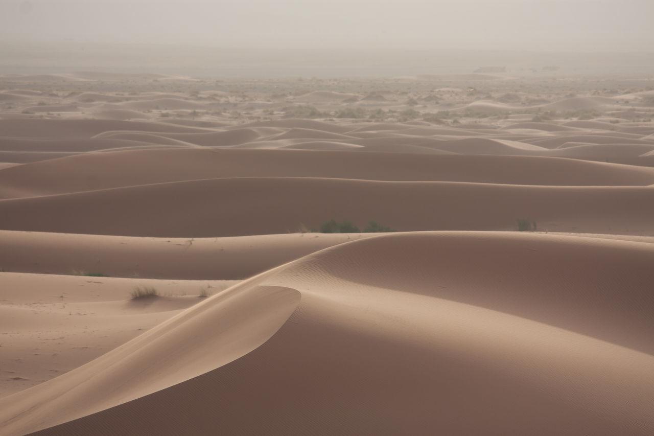 Beautiful stock photos of desert, Arid Climate, Beauty In Nature, Day, Desert